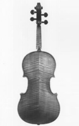 Davidoff-Morini Stradivarius back